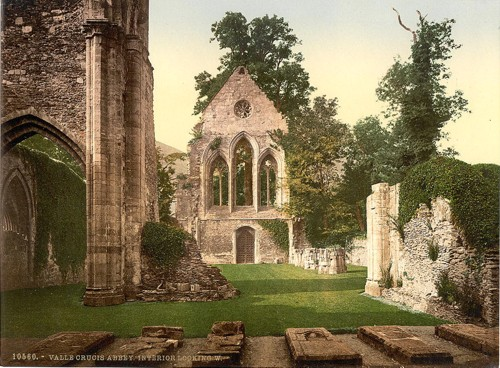 [Valle Crucis Abbey, interior looking west, Llangollen, Wales]